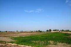 Dorf mit den Häusern umgeben durch Ackerland nahe Mirpurkhas Sindh Pakistan Lizenzfreie Stockbilder