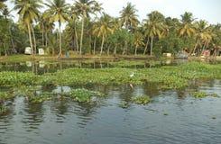 Dorf nahe Stauwassern, Kumarakom, Kerala, Indien Lizenzfreie Stockfotos