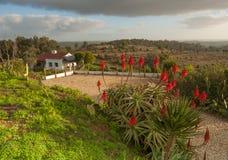 Dorf-Portugal-Ansicht über Ranch stockbild