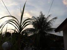 Dorf-Sonnenuntergang Lizenzfreie Stockfotografie