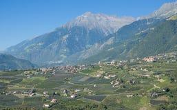 Dorf Tirol, södra Tyrol, Trentino, Dolomites, Italien Fotografering för Bildbyråer