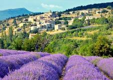 Dorf-und Lavendel-Feld Lizenzfreie Stockfotografie