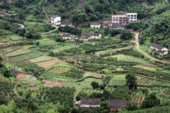 Dorf und Obstgärten Stockbilder
