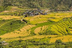 Dorf von Bhutan und terassenförmig angelegtes Feld bei Punakha, Bhutan Stockfotos