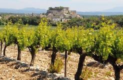 Dorf von Grignan hinter den Weinbergen, Frankreich Stockfoto