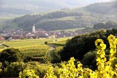 Dorf von Nothalten Lizenzfreies Stockfoto
