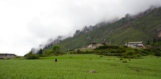 Dorf in Zhagana (Gannan) Stockbild