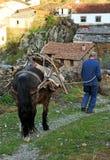 Dorfbewohner, der von der Arbeit auf dem Gebiet, Hurdes, Extremadura, Spanien zurückkommt Stockfotos