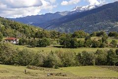 Dorfbewohner, die auf dem Gebiet an den Röcken des Kaukasus in Georgia arbeiten lizenzfreies stockbild