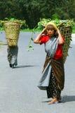 Dorffrauen bei Nordostindien Stockfotografie