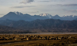 Dorflandschaft Xinjiangs Hemu lizenzfreies stockbild