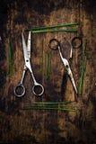 Dorfwerkzeuge Scheren und Kräuter Stockfoto