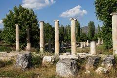 Dorian columns Stock Images