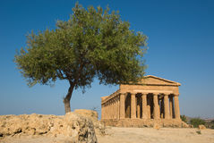 Doric temple in Agrigento Royalty Free Stock Photo