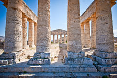 Doric temple in Segesta Royalty Free Stock Photography