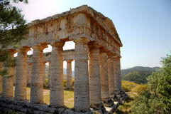 Doric Temple in Segesta Stock Images