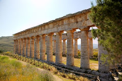 Doric Temple in Segesta Royalty Free Stock Images