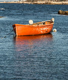 Doris de pêche Photo stock