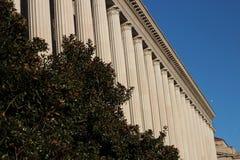 Dorische Säulen und Bäume in DC Lizenzfreie Stockfotos
