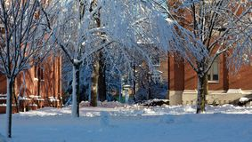 Dorm Buildings at Harvard University in Winter Stock Photos