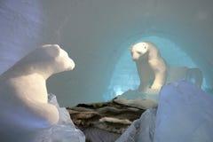 Dormendo con gli orsi polari Fotografia Stock