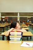 Dormendo nella libreria Fotografie Stock Libere da Diritti