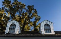 Dormers Na Czarnym gontu dachu Obrazy Stock