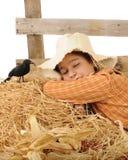 Dormido en el trabajo Fotografía de archivo libre de regalías