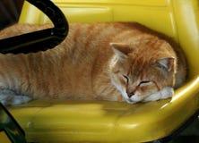 Dormido en la rueda Imágenes de archivo libres de regalías