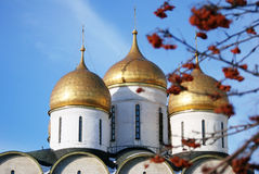 Dormition church in Moscow Kremlin and rowan berries. Royalty Free Stock Photography