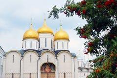 Dormition kyrka sedda igenom rönnbär Royaltyfri Foto