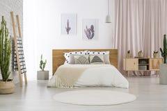 Dormitorio brillante con adorno del cactus fotos de archivo libres de regalías