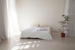 Dormitorio con una cama blanca y una planta verde Imágenes de archivo libres de regalías
