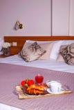 Dormitorio del hotel de Ares Imagen de archivo libre de regalías