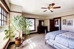 Dormitorio principal con el árbol Imagen de archivo libre de regalías