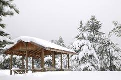 Dorn im Snowy-Winter-Wald Lizenzfreie Stockfotografie