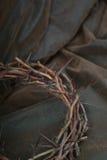 Dornen auf Leder Lizenzfreies Stockbild