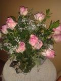Dornen der Rosen n Lizenzfreie Stockbilder