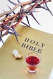 Dornenkrone auf einer Bibel Lizenzfreies Stockbild