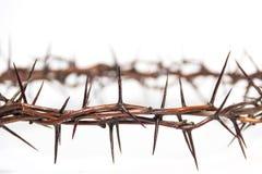 Dornenkrone Jesus Christ lizenzfreie stockbilder