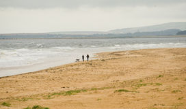 Dornoch beach in Autumn. Royalty Free Stock Photos