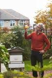 Dorośleć mężczyzna Patrzeje miód Produkującego Jego Swój pszczołami zdjęcia stock