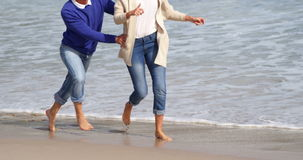 Dorośleć pary cieszy się na plaży zbiory