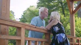Dorośleć pary pozycję przy mostem opowiada i ono uśmiecha się Piękna starsza kobieta w lato sukni i brodatym mężczyźnie na a zdjęcie wideo