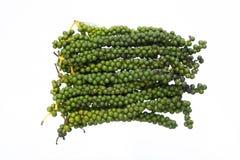 Dorośleć zieleni peppercorn badyle Zdjęcie Royalty Free