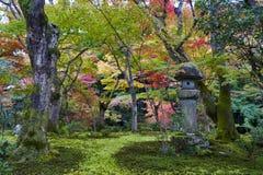 Doro Kasuga или фонарик камня в саде японского клена во время осени на виске Enkoji, Киото, Японии Стоковые Изображения RF