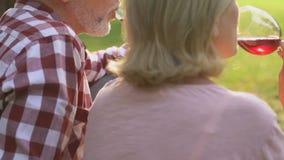 Dorosła para komunikuje wino i pije, wygodny rodzinny środowisko, zbliżenie zdjęcie wideo