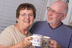 Dorosłej pary szczęśliwy senior zdjęcie royalty free