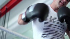 Dorosły mężczyzna boks przy kamerą zbiory wideo