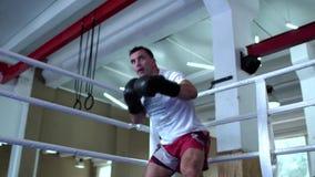 Dorosły mężczyzna jest ubranym sportswear ciupnięcie przy kamerą w bokserskich rękawiczkach zbiory wideo